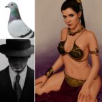 Live by Night and Pigeon Racing – Intermission 141